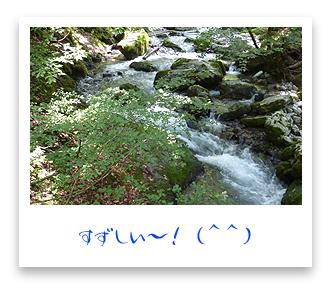 滋賀県のすずしい~河内風穴!
