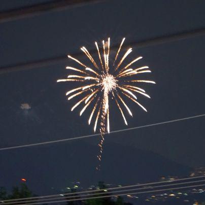 黄赤の花火がタンポポの花みたいに夜空で広がっています