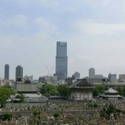 マツ六さんの窓から見た光景。日本一高いビル『あべのハルカス』と聖徳太子が建立の四天王寺さんが同時に見られます