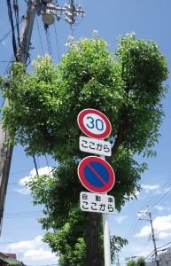大阪府箕面市の半町交差点付近にある標識