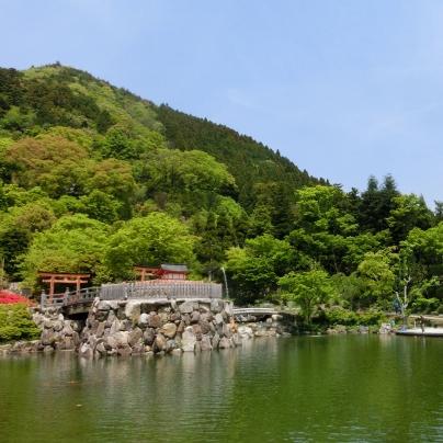 新緑の山を背景に池に面したお堂が