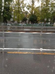当店の前を通る国道で、硝子窓越しに見える雨