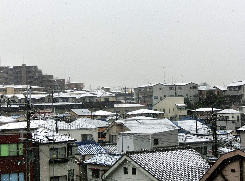 雪やこんこ~♪