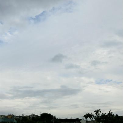 雨雲が切れ切れになって青空がみえつつあります。