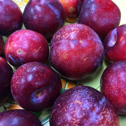 黄色いお盆のうえに赤紫の実がたくさん載っています。