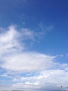 青空にも、白い雲が多いですね。