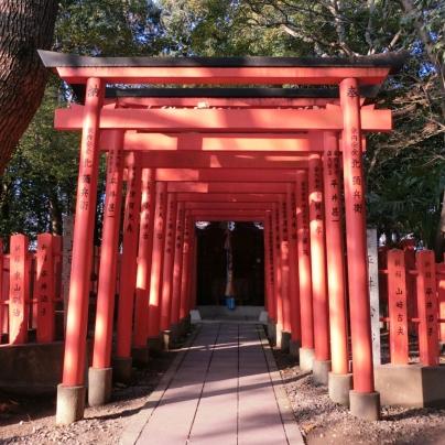 赤い鳥居がいくつも並んでおり、その奥に拝殿があります。