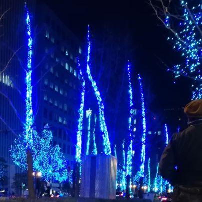 御堂筋の側道にたつ木々が青白いLEDの電飾で飾られ輝いています
