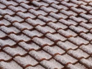 褐色の屋根瓦にうっすらと白い雪が積もっています。